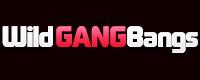 Visit WildGangBangs.com